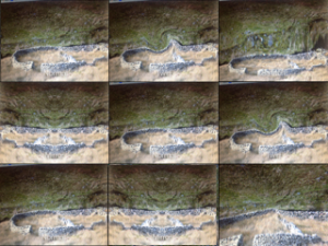 Nine variant images of a sheepfold