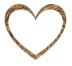 The outline of a heart, made in agricuotural straw